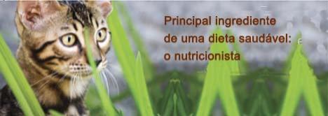 Ingrediente essencial para uma dieta balanceada para seu gato: nutricionista animal.